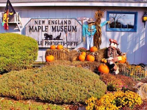 New England maple museum is decorated for the fall with pumpkins and scarecrows.