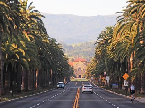 Spring Break in Palo Alto
