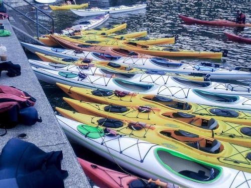 Deep Cove Kayaking and Canoe
