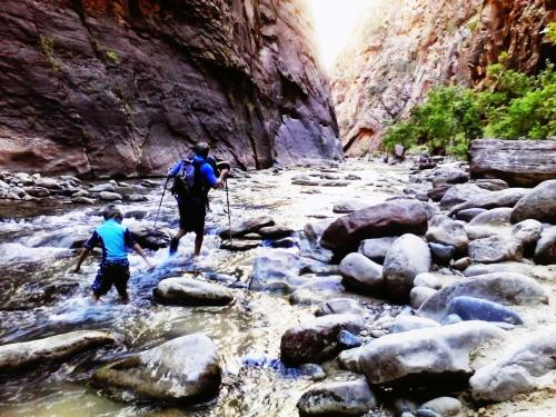 Zion's The Narrows