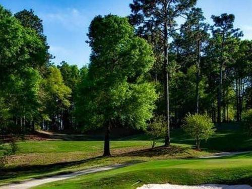 magnolia-golf-course-mobile-alabama-golfing-163886-1.jpeg