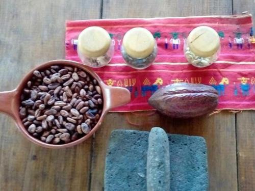 granos-de-cacao-1.jpg