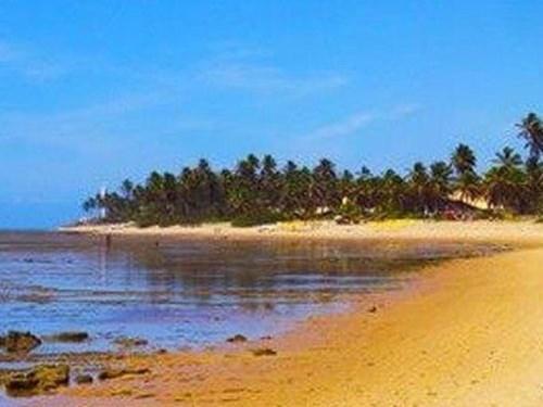 praia-do-forte.jpg