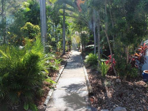 rainforest-garden-path-1.JPG