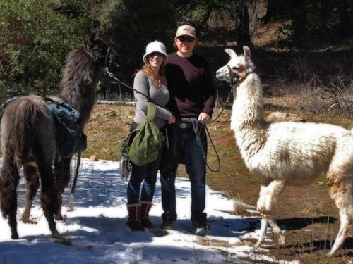 Packages & Llama Treks Packages & Llama Treks