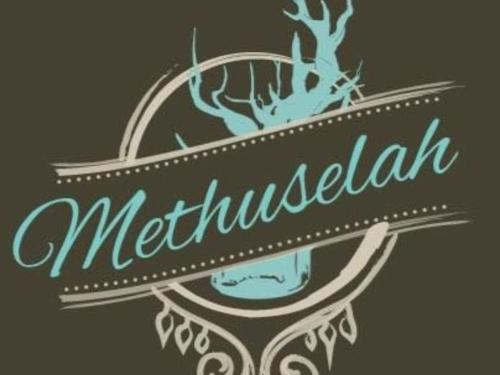 Methuselah Bar and Lounge