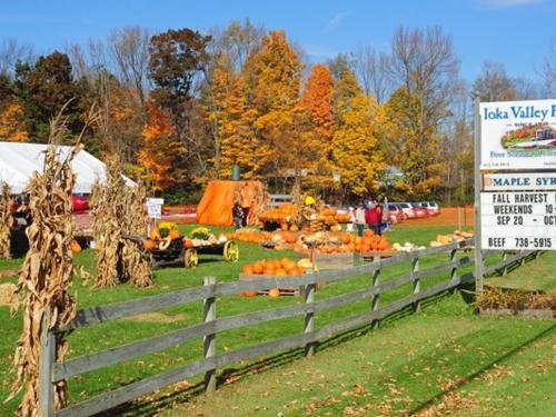 Ioka Valley Farm - Fall Fun in The Berkshires