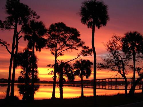 Top Five Ways To Enjoy Daytona Beach… As a Local