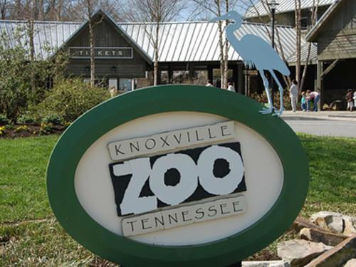 Things to do in Knoxville