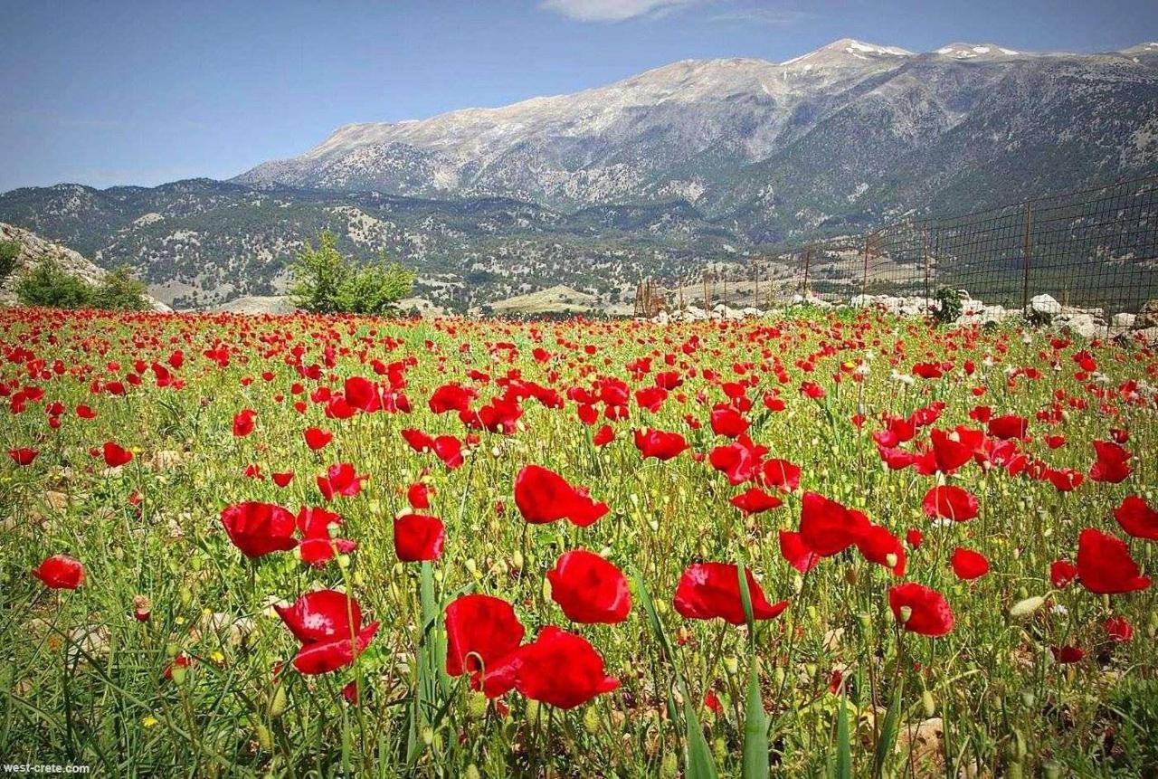 Cretan Príroda