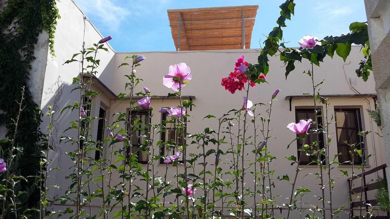 Naša záhrada