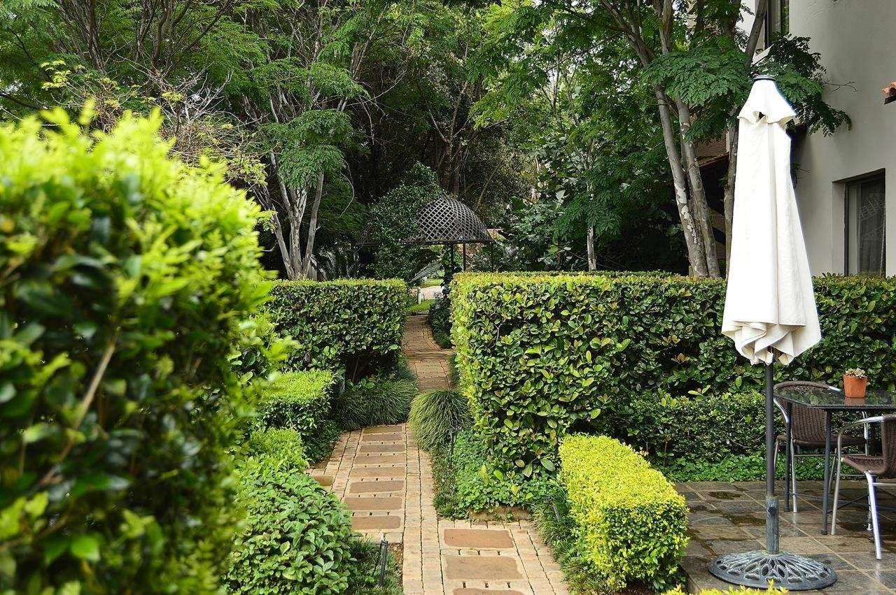 Pathway through the garden