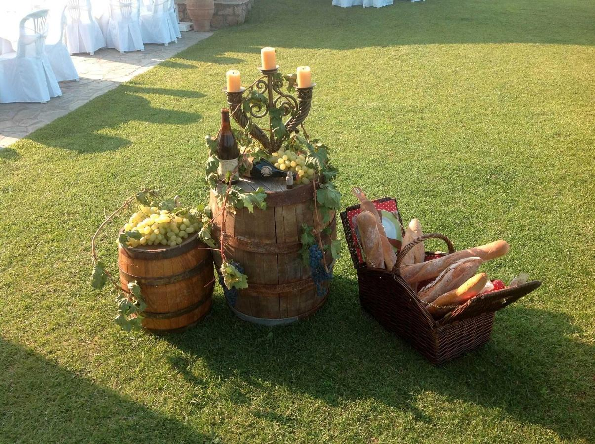 Вино Barrel Picnik