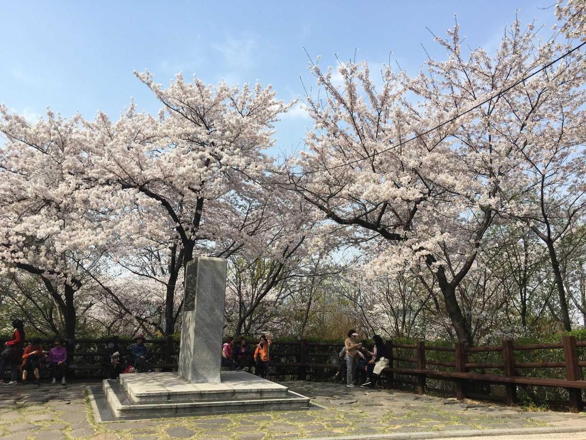 Namsan Park 5.jpg