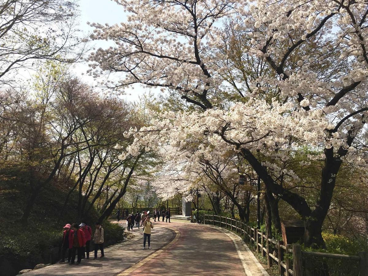 Namsan Park 1.jpg
