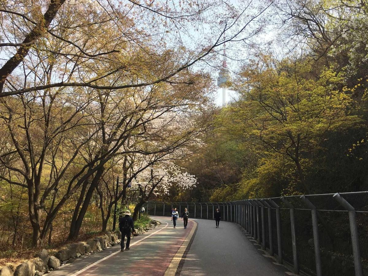 Namsan Park with Namsan Tower.jpg