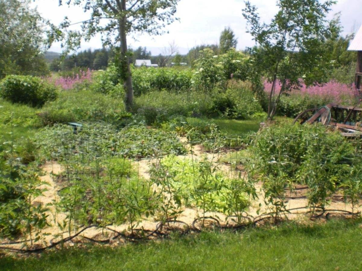 Le jardins