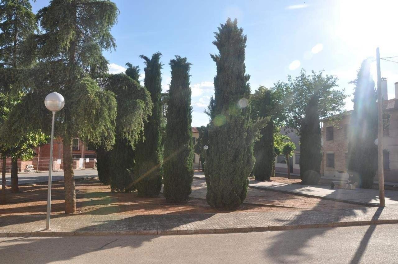 Casa Rural Villanueva de los Infantes | Ciudad Real|Doña Carmen.jpg