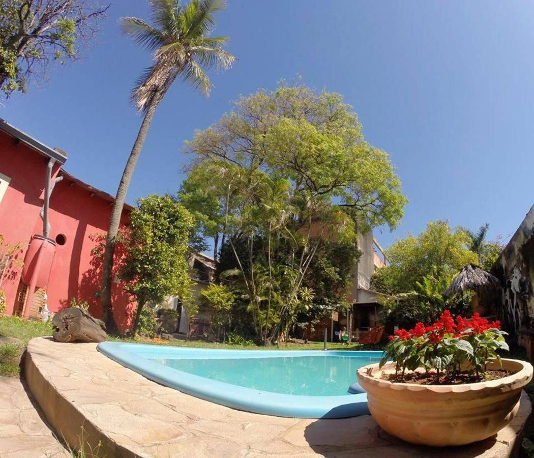view of the garden and swimming pool at el nomada hostel.jpg