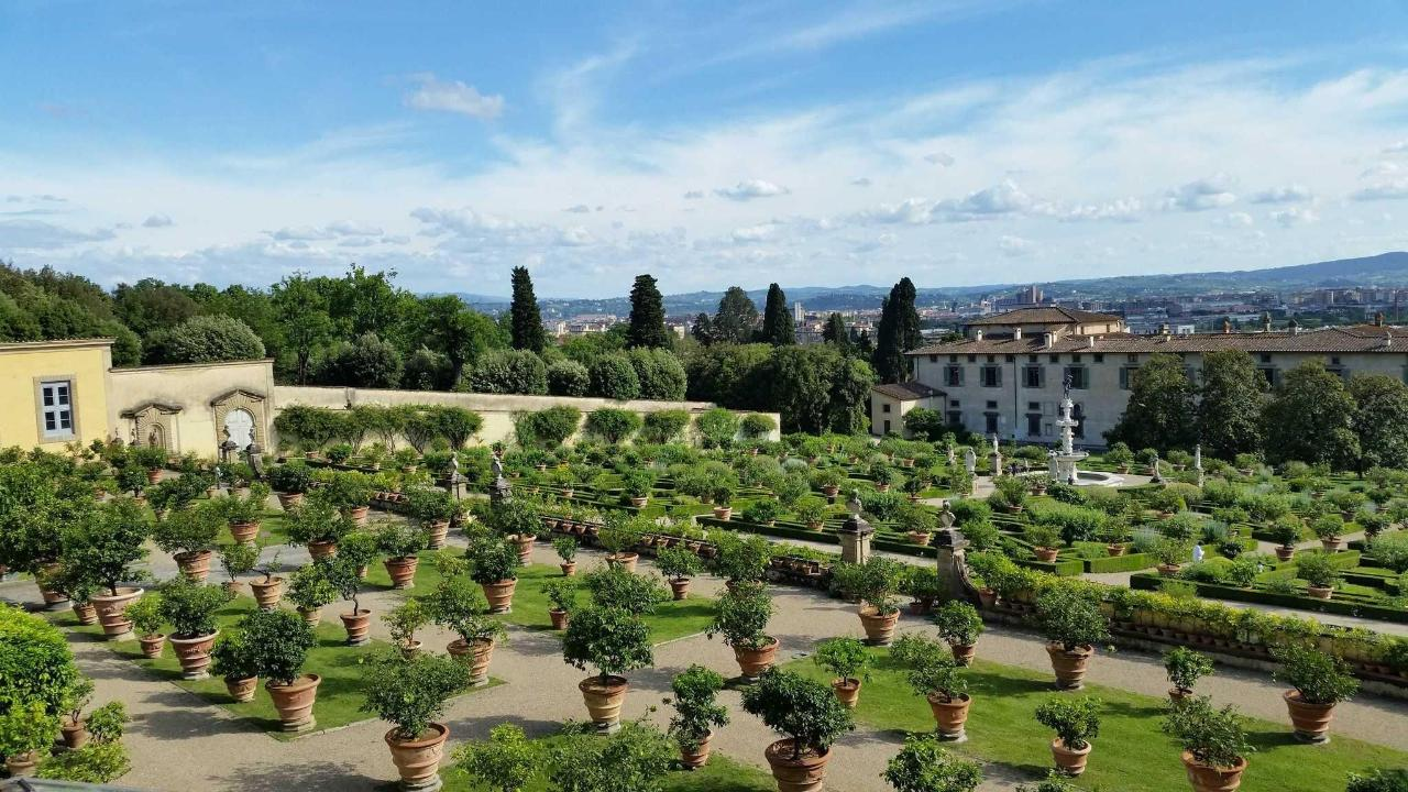 giardino villa medicea di castello.jpg