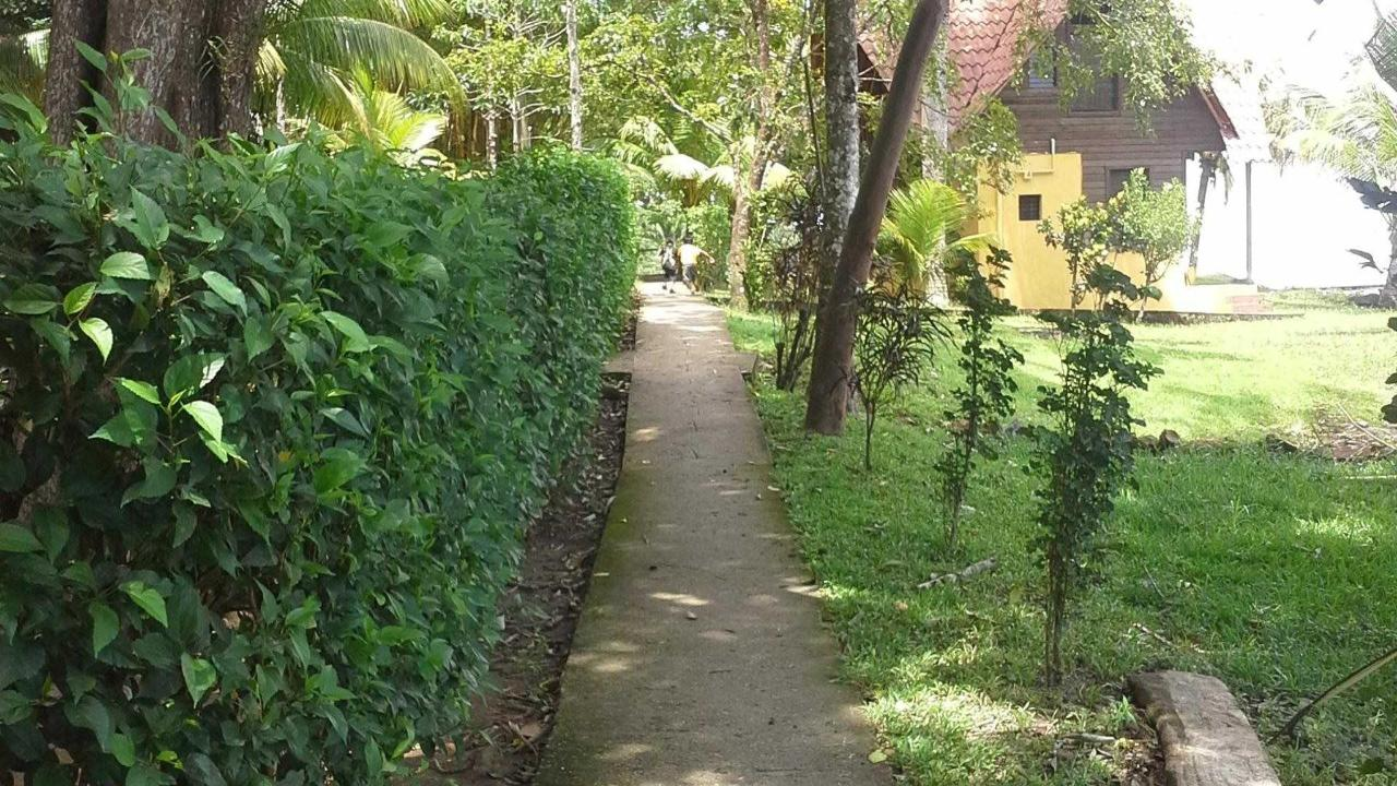Approach to Cabana 6 and 7