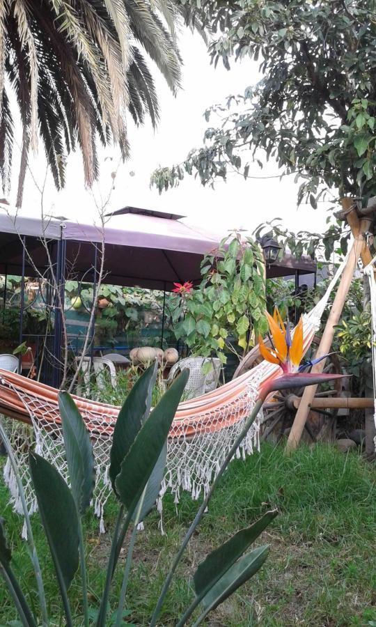 Hostal Las Delicias.jpg