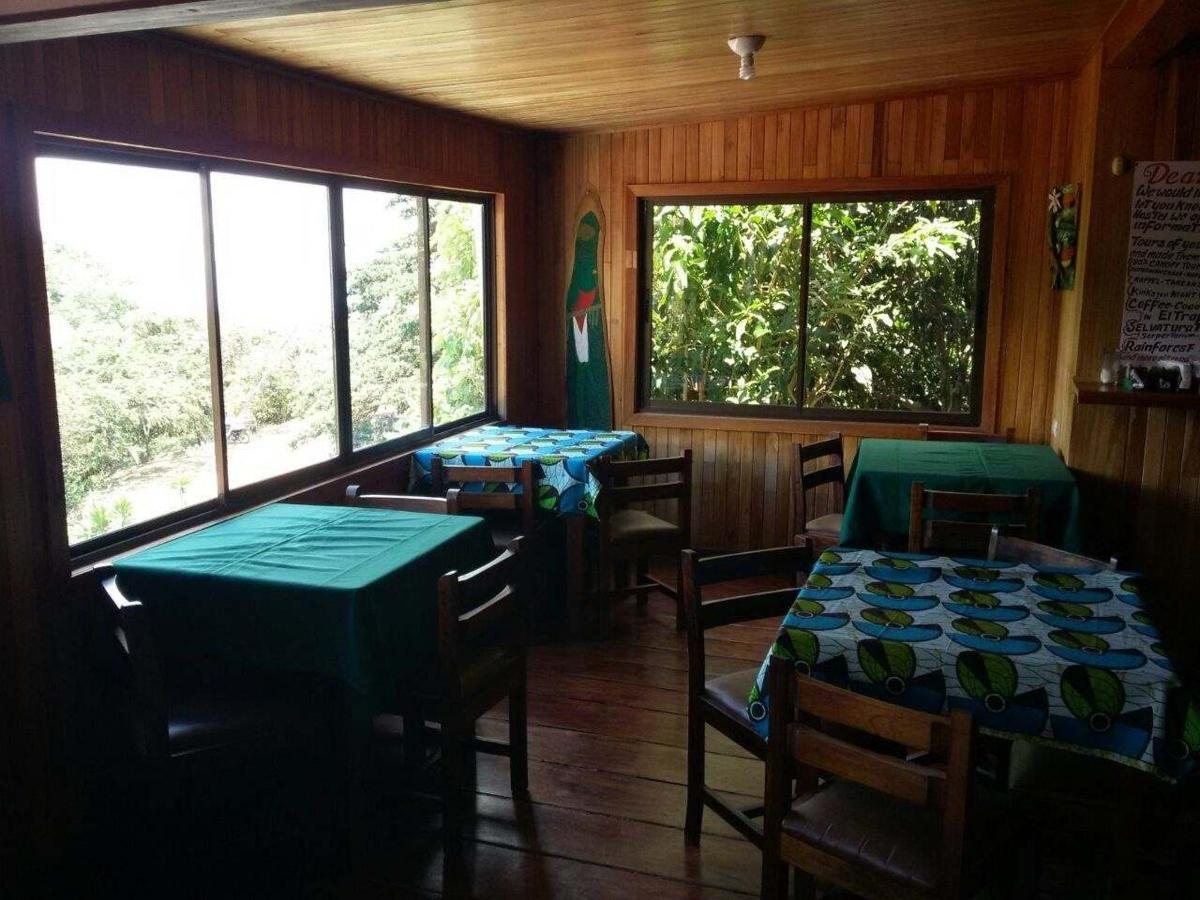 Hostel Mountain View Backpackers
