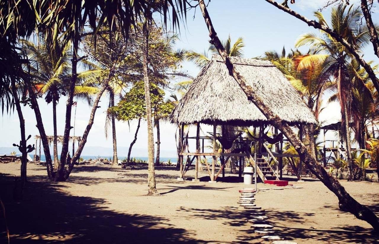 Zwischen Palmen und Strand ausruhen.