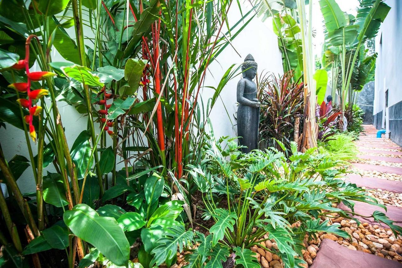 Small tropical garden along the villa