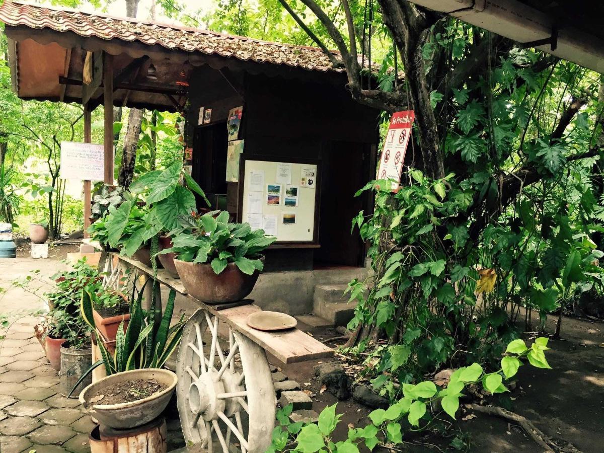 Property  Vista lateral de la Recepción y el jardín del Hotel Apastepe