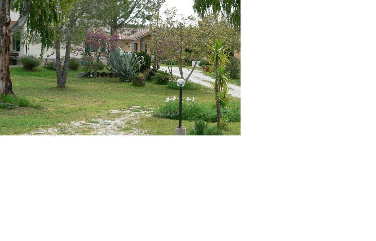 Property185