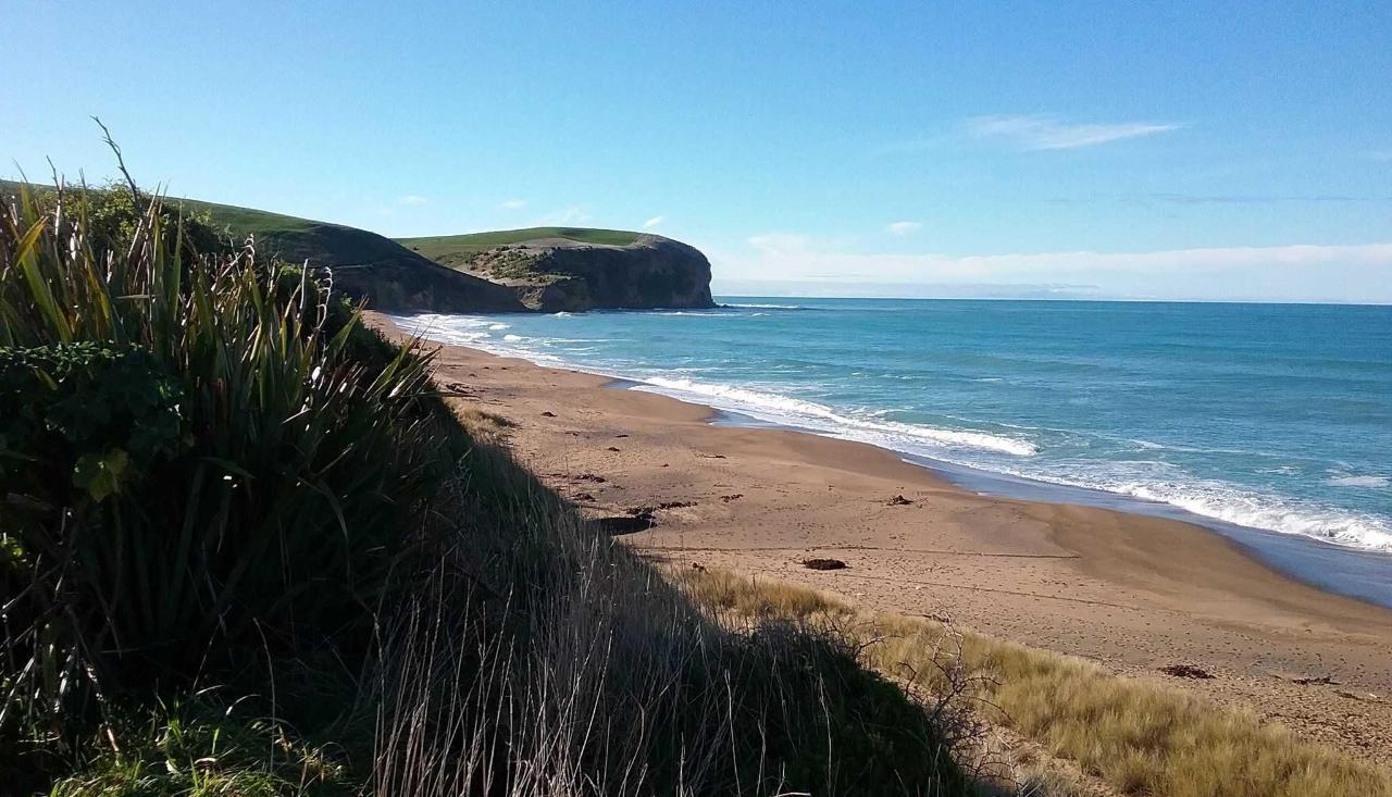 Scenic Coastal Drive beach.jpg