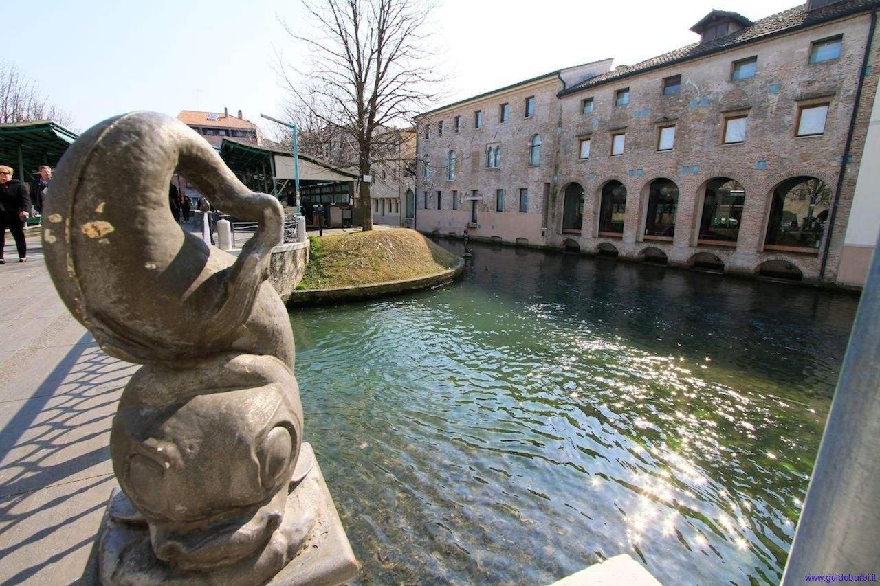 Treviso - Ca' Dei Carraresi - galleria d'arte