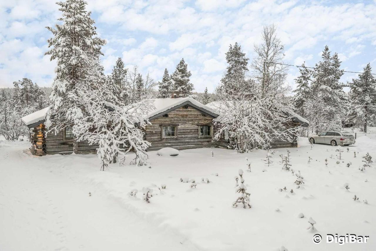 Polar Aurora Cabins