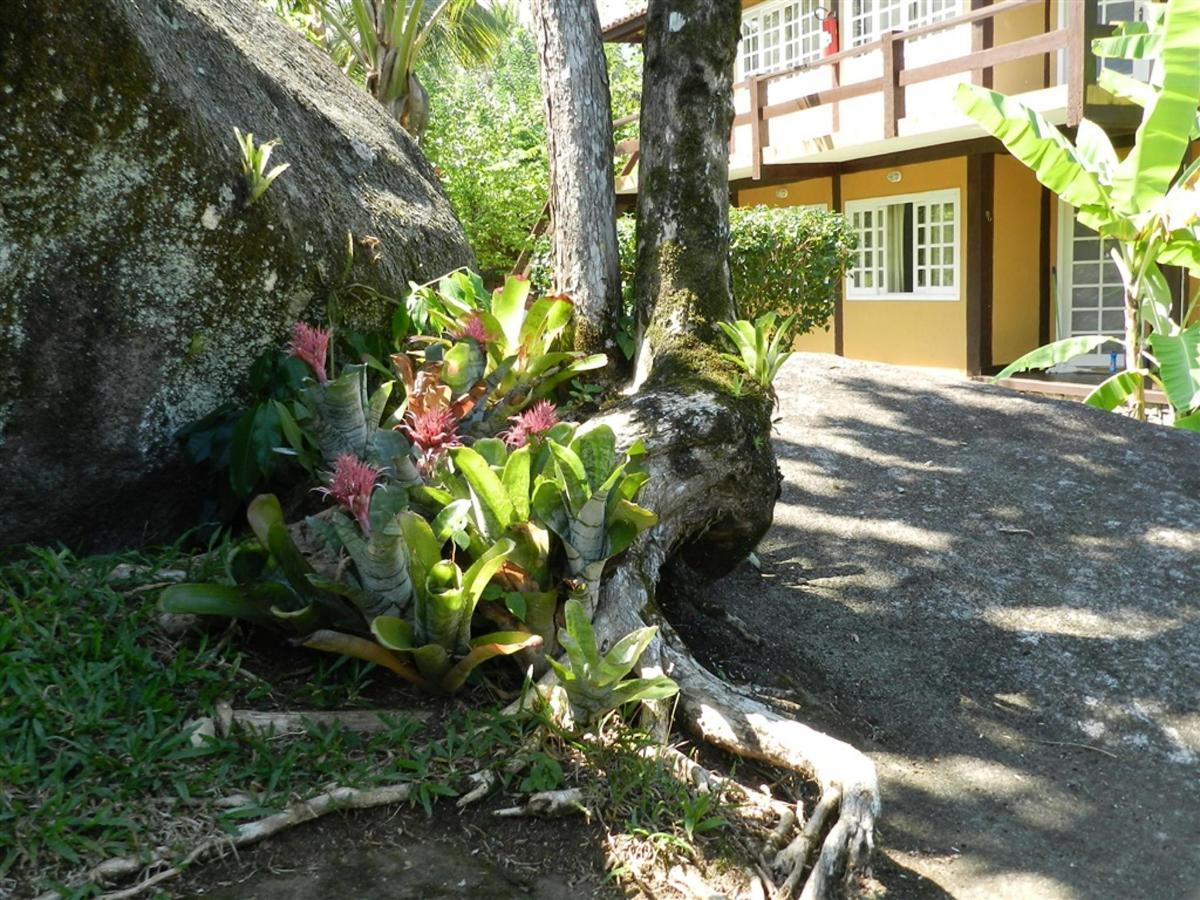 Piedras y jardines del pueblo (4) .jpg