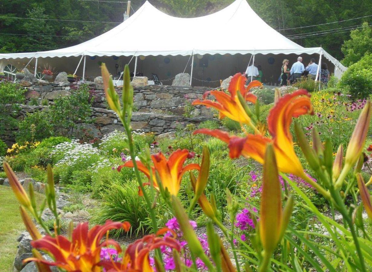 Wedding tent in garden.jpg