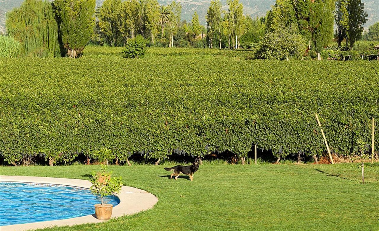 Landscape 6 - Terraviña.jpg