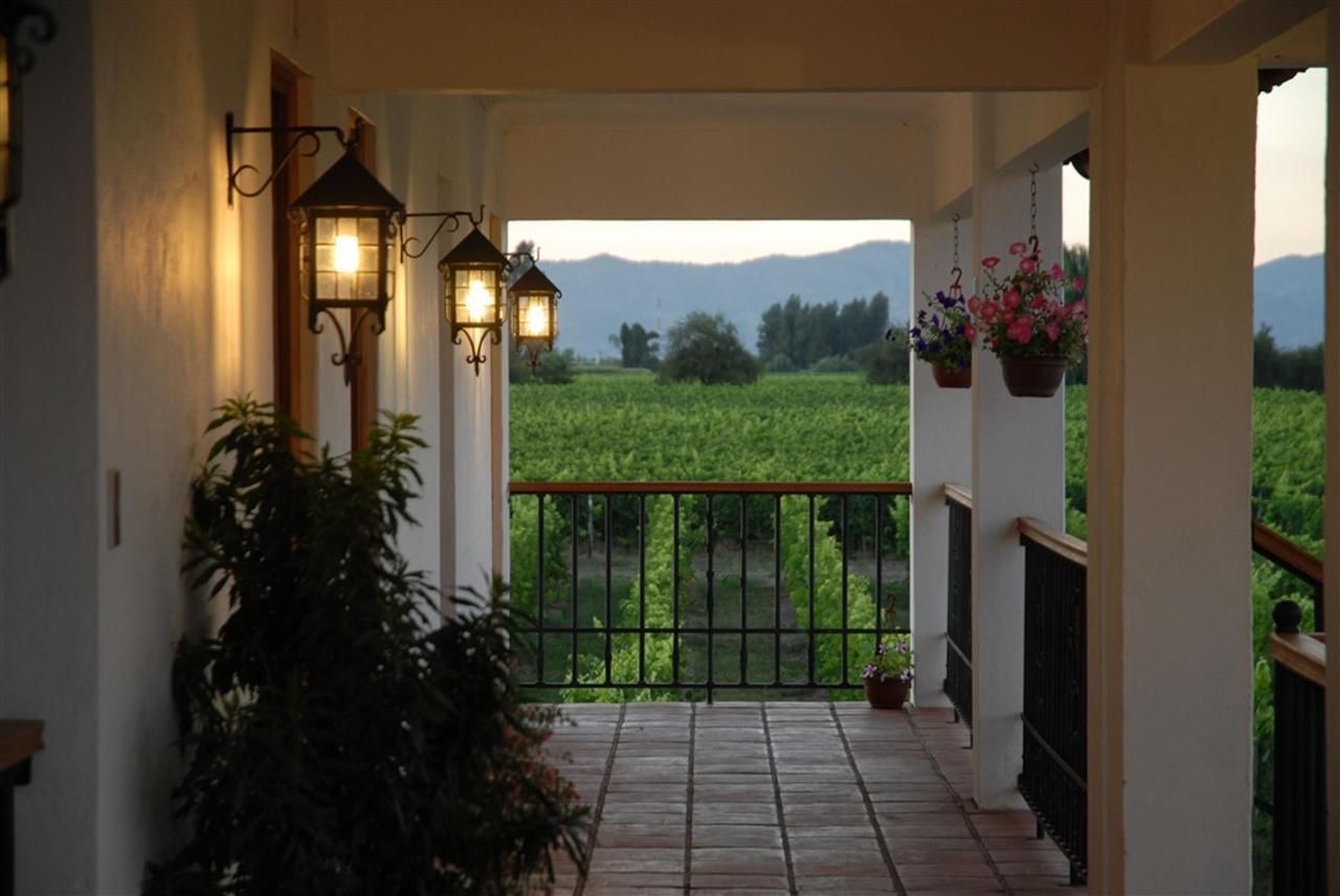 Landscape 18 - Terraviña.jpg