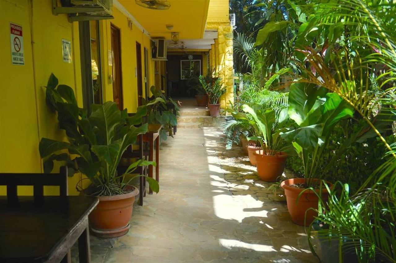 Entre plantas - Hotel Aurora.jpg