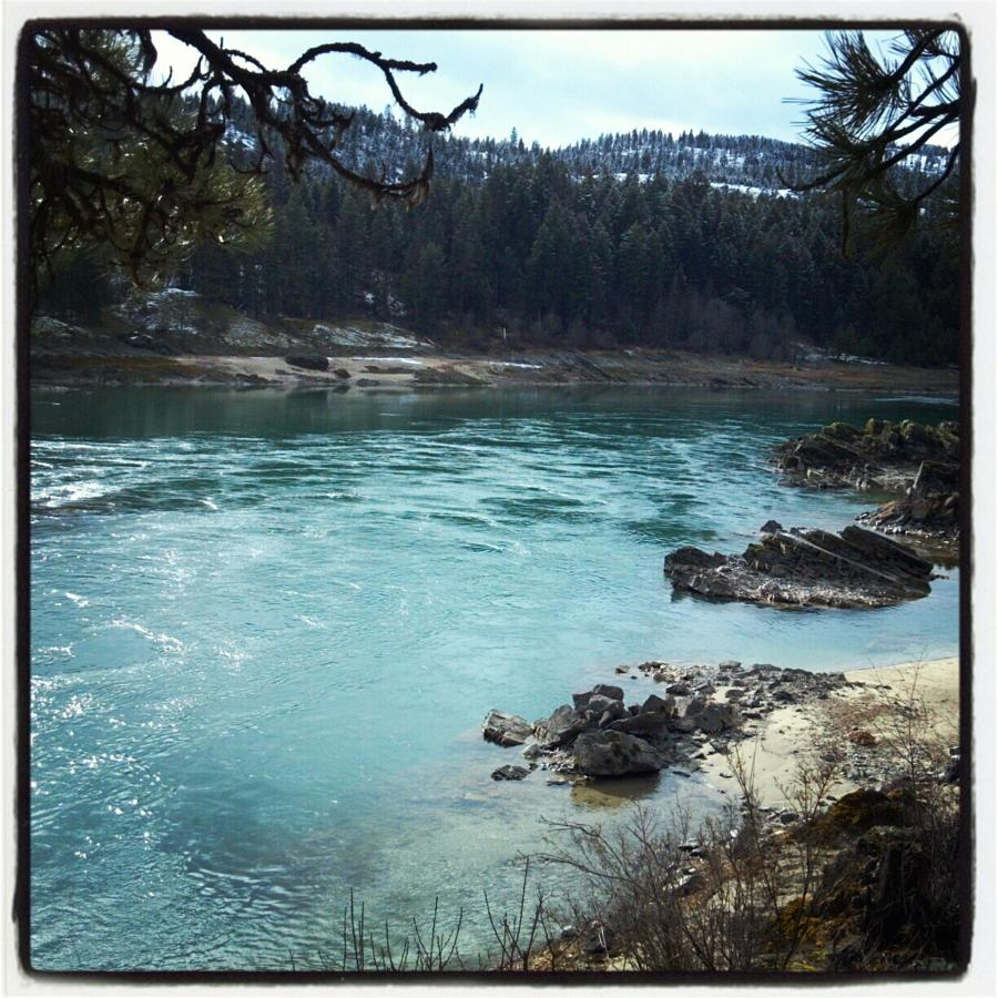 Clark Fork River Spring 2013, just walking minutes from the motel .jpg