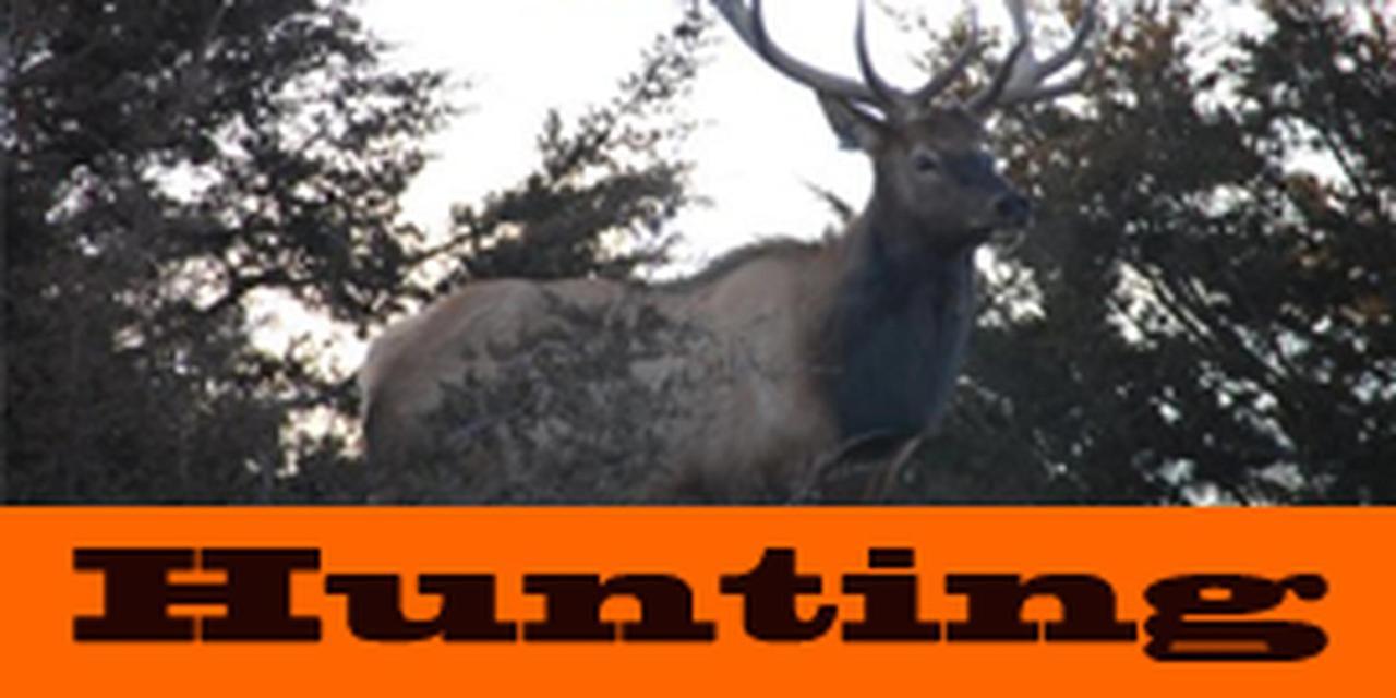 2011 Hunts