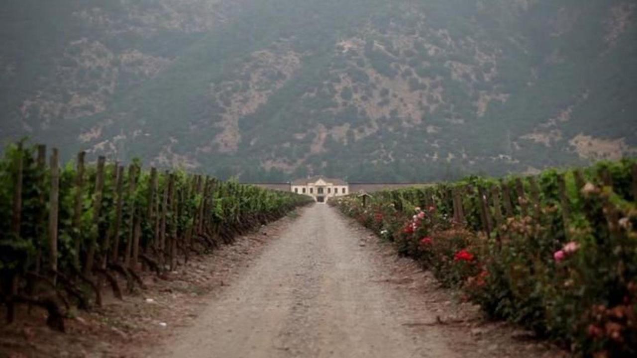 Santa Helena Winery.jpg