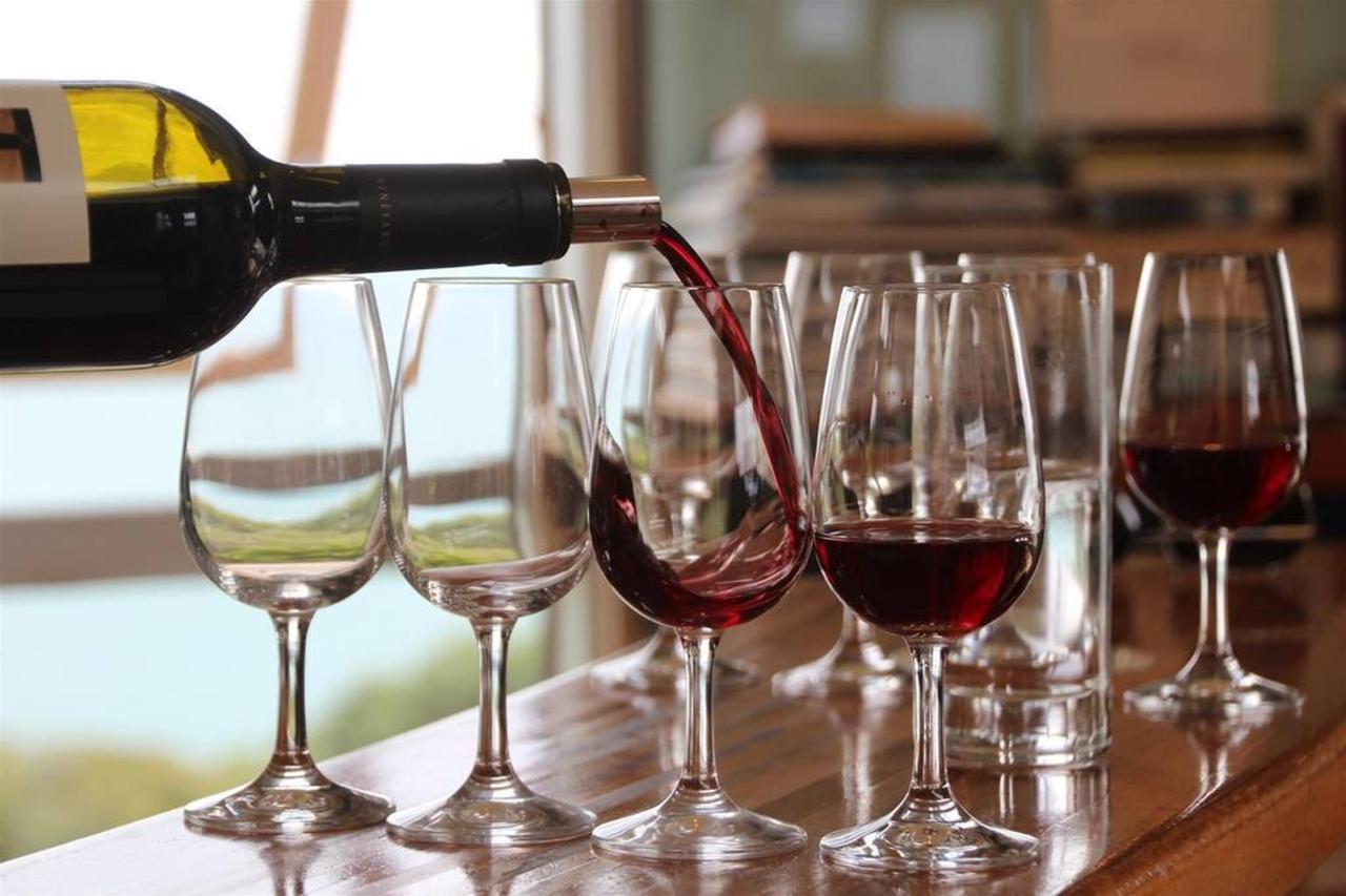 Dégustation de vin privé.jpg