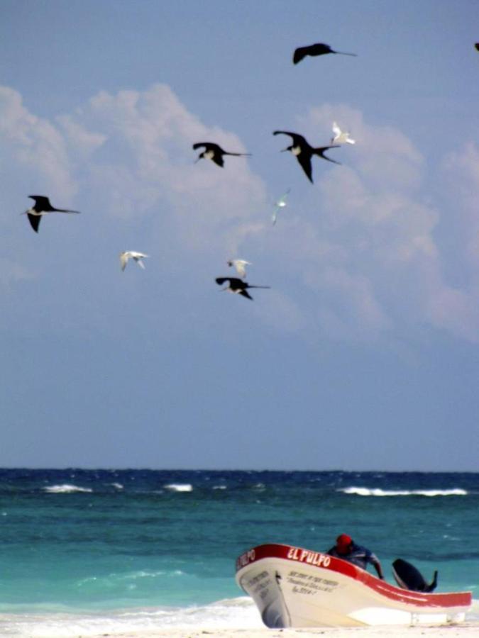 Playa Pescadores.jpg