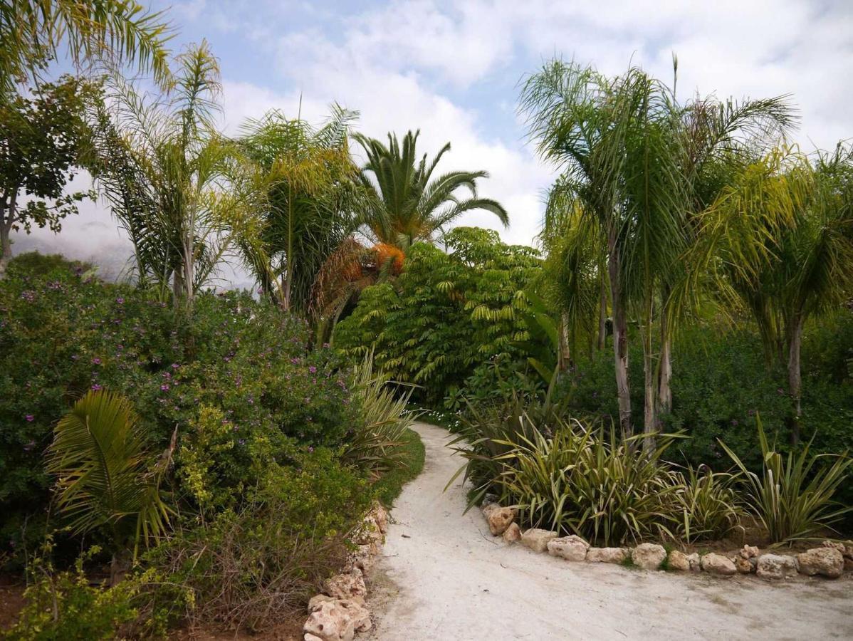 Jardim e Exteriores