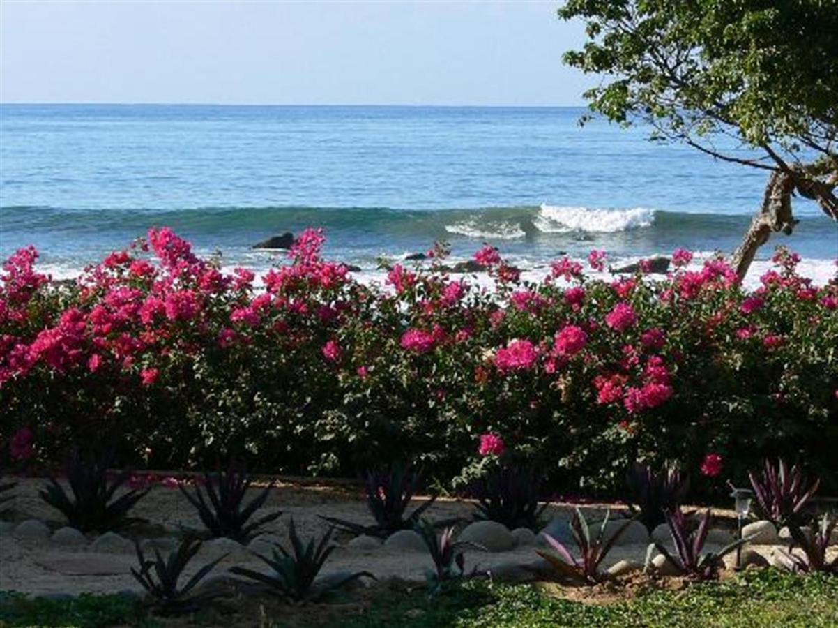 La playa de la palapa.jpg
