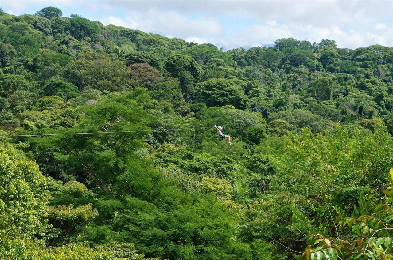 Canopy tour in Jaco.jpg