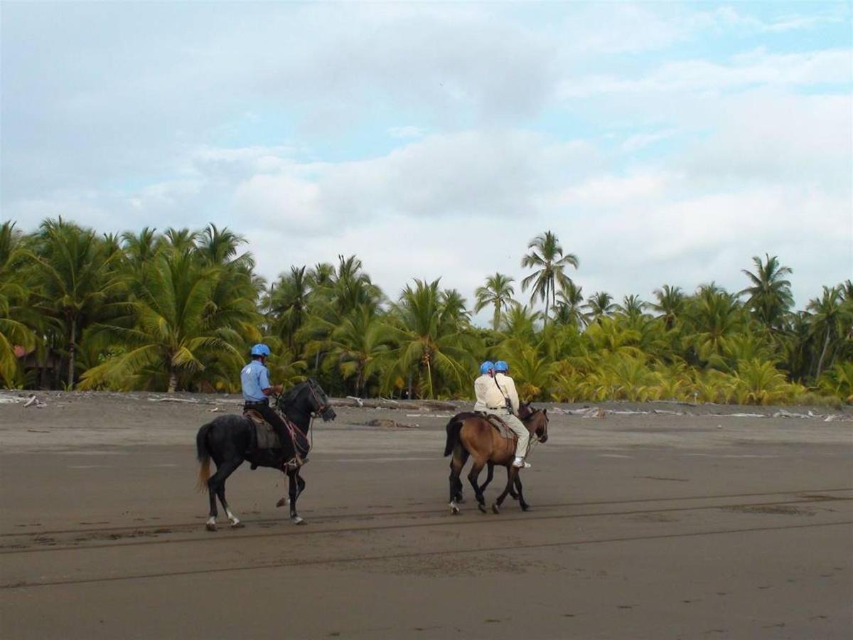 Horse back riding - Jaco.jpg