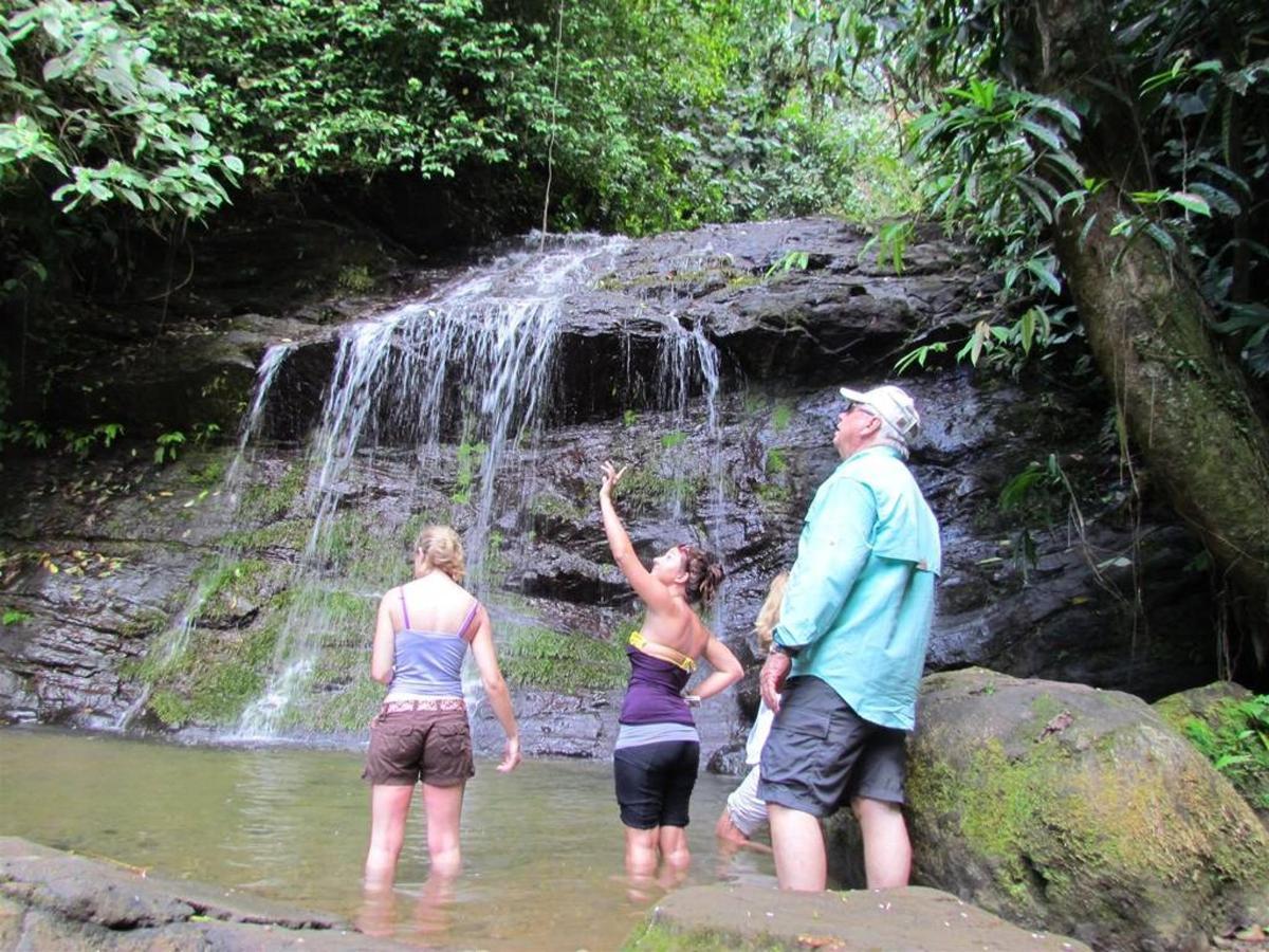 Waterfall - Jaco.jpg