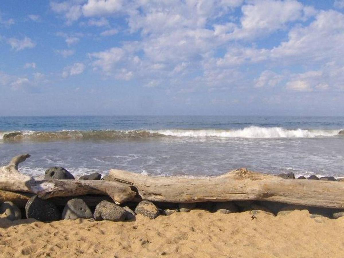 Olas en la Playa.jpg
